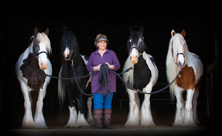 Equine gestalt coaching Melisa Pearce and her gypsy vanner horse coaches